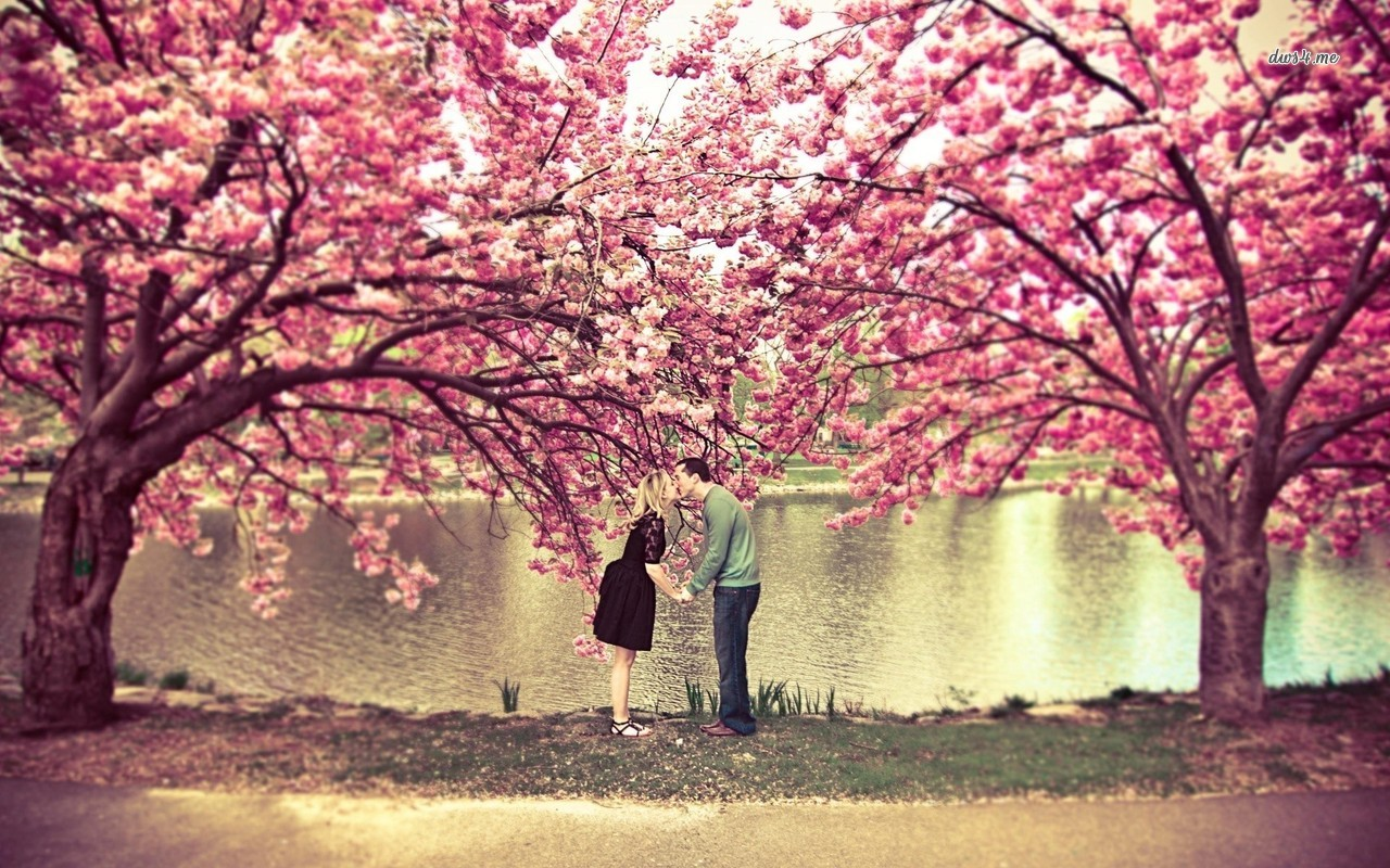 Kissing-Under-A-Cherry-Blossom-Tree